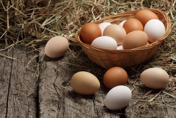 Guscio d'uovo